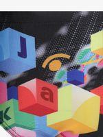 JCABU13002 IDX-004 FLAG-S